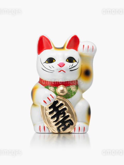 招き猫の写真素材 [FYI01501523]