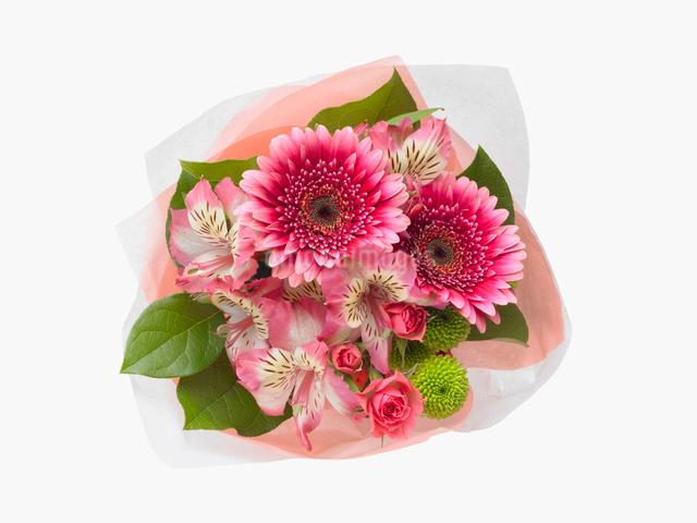 花束の写真素材 [FYI01501580]