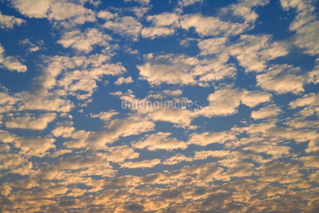 夕日に染まる雲の写真素材 [FYI01501863]