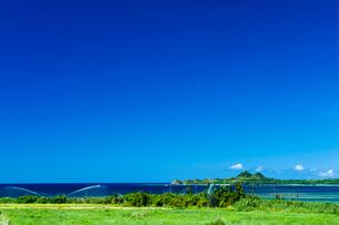 青い空とスプリンクラーの回る畑の写真素材 [FYI01502033]