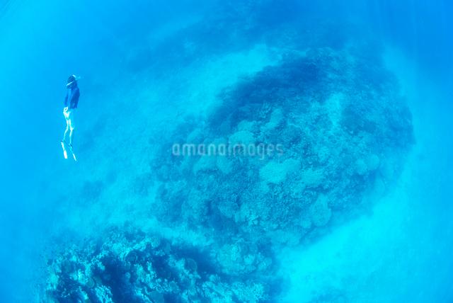 青い海でシュノーケリングをする女性の写真素材 [FYI01502181]