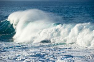ノースショアの波の写真素材 [FYI01502294]