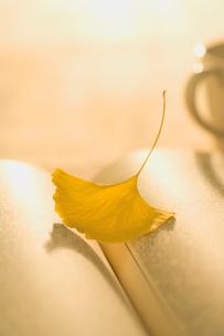 開いた本と一枚の銀杏の葉の写真素材 [FYI01502316]