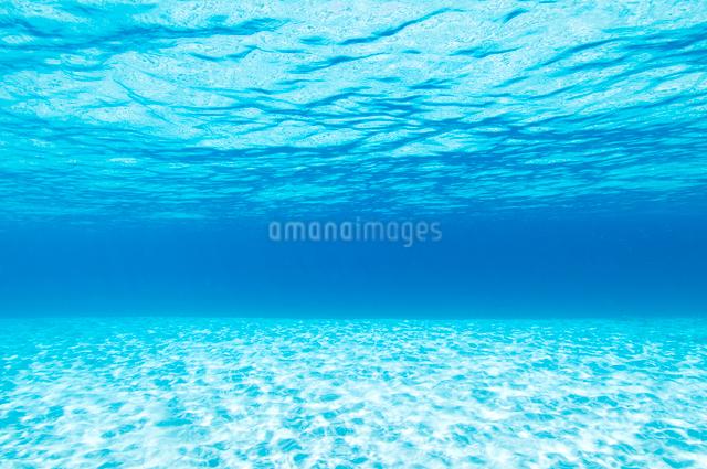輝く水面と白い砂浜の写真素材 [FYI01502579]
