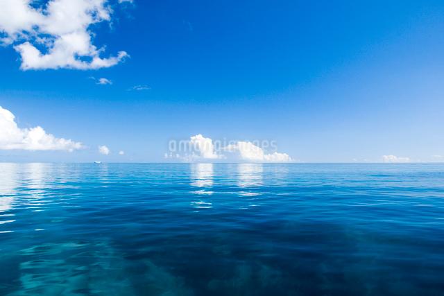 青い海と青い空の写真素材 [FYI01502627]