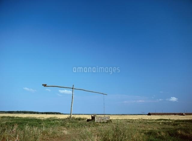 ハンガリー大平原(プスタ)の写真素材 [FYI01503087]