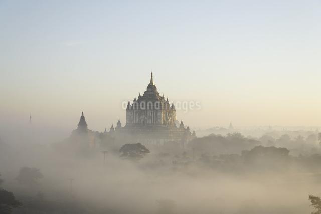 朝もやの仏塔が並ぶ古代遺跡の写真素材 [FYI01503568]