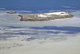 イーグル絶壁の写真素材 [FYI01503827]