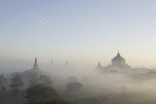 朝もやの仏塔が並ぶ古代遺跡の写真素材 [FYI01504056]