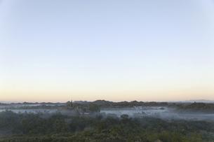 夕暮れの密林と仏塔の写真素材 [FYI01504075]