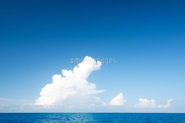 水平線と青空と雲の写真素材 [FYI01504086]
