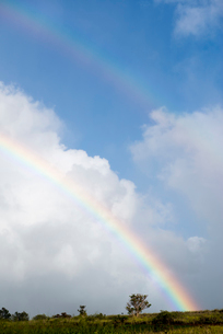 青空とダブルレインボーの写真素材 [FYI01504243]