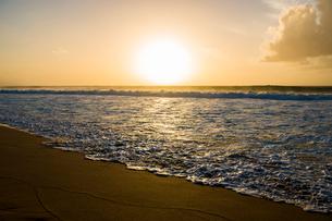 オアフ島ノースショアの夕暮れの写真素材 [FYI01504390]