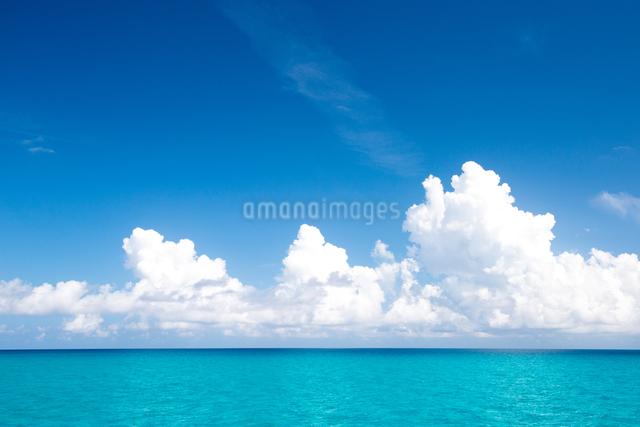 水平線と夏雲の写真素材 [FYI01504669]