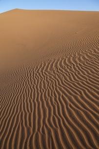 sand duneの写真素材 [FYI01504864]