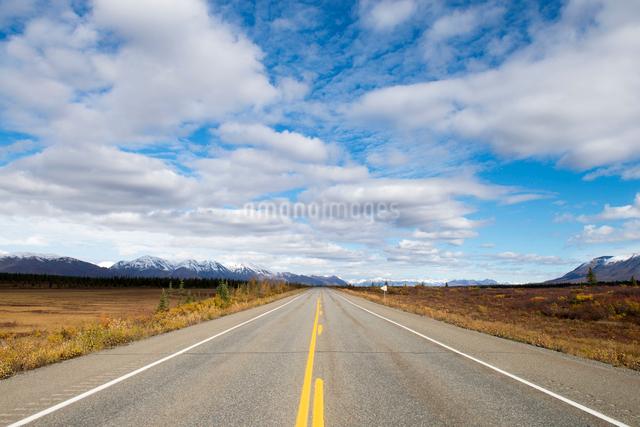 アラスカの一本道の写真素材 [FYI01504914]