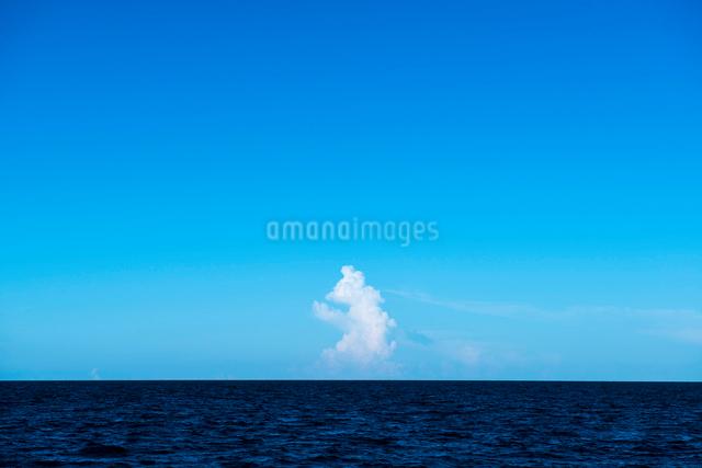 バハマの海の青空と雲の写真素材 [FYI01505076]