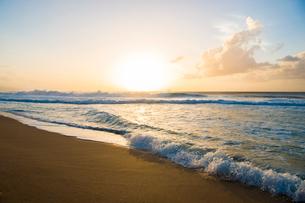 オアフ島ノースショアの夕暮れの写真素材 [FYI01505131]