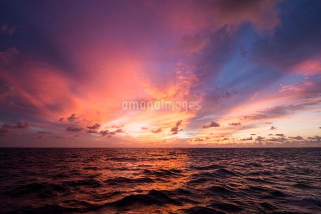 バハマの海の夕焼けの写真素材 [FYI01505184]