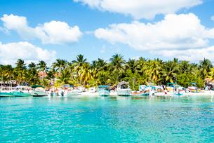 メキシコ カンクン沖 イスラムヘーレス島のビーチの写真素材 [FYI01505209]
