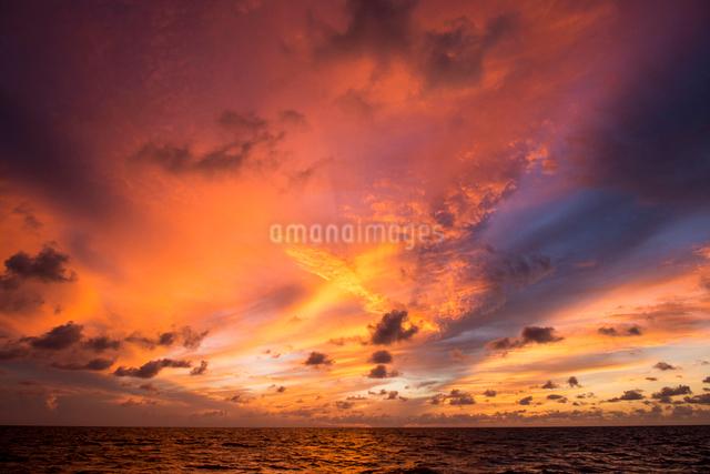 バハマの海の夕焼けの写真素材 [FYI01505398]