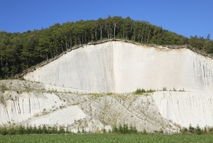 man-made cliff, forestの写真素材 [FYI01506445]