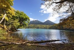 Lake Onnetoh, autumn colorsの写真素材 [FYI01506518]