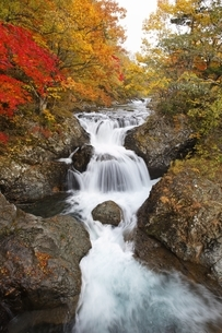 Sankai-daki, waterfalls, autumn colorsの写真素材 [FYI01506581]