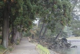 Motsu-ji Temple, 'Pure Land Garden', pond, treesの写真素材 [FYI01506686]
