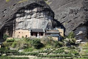 old temple & tea plantationの写真素材 [FYI01506689]