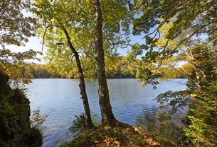 Lake Akan-ko, autumn colorsの写真素材 [FYI01506718]