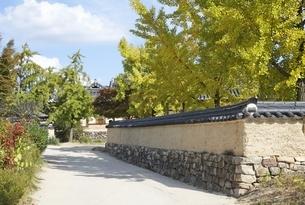 street, mud walls, autumn colors, Hahoe Villageの写真素材 [FYI01506833]
