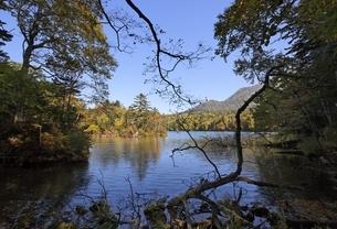 Lake Akan-ko, autumn colorsの写真素材 [FYI01506864]