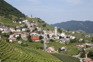 Santo Stefano, village, vinyards, Valdoppiadene, Venetoの写真素材 [FYI01506960]
