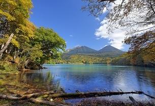 Lake Onnetoh, autumn colorsの写真素材 [FYI01506991]