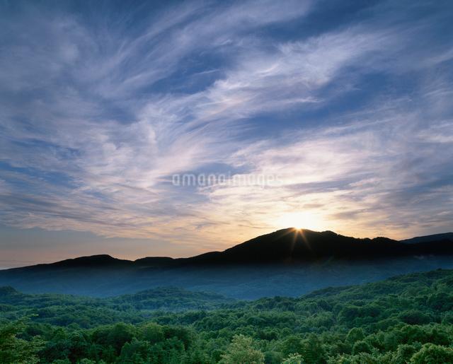 朝日と天狗山と新緑のブナ林の写真素材 [FYI01507003]
