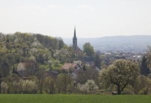Neuenstadt-Stein, village, near Heilbronnの写真素材 [FYI01507041]