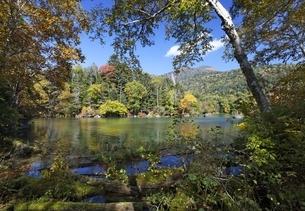 Lake Akan-ko, autumn colorsの写真素材 [FYI01507053]