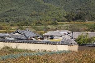 houses, Hahoe Village, Gyeongsangbuk-do, Koreaの写真素材 [FYI01507185]