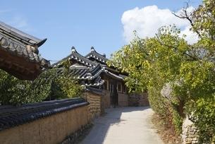 gate, Hahoe Village, Gyeongsangbuk-do, Koreaの写真素材 [FYI01507341]
