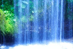 滝状の岩清水の写真素材 [FYI01507387]