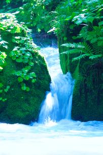 滝状の清流の写真素材 [FYI01507502]