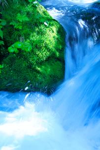 滝状の清流の写真素材 [FYI01507579]