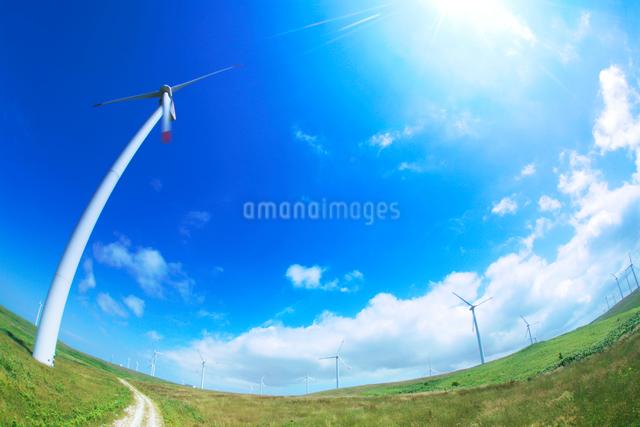 風力発電の風車と太陽の写真素材 [FYI01507588]