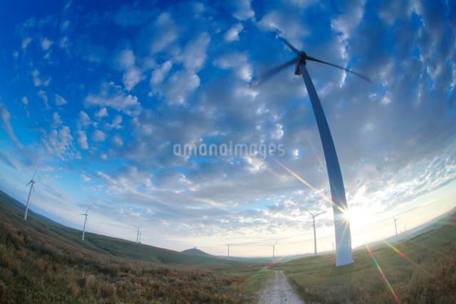 風力発電の風車と朝日の写真素材 [FYI01507618]