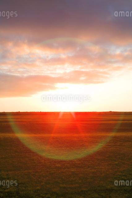 牧草地と朝日の写真素材 [FYI01507660]