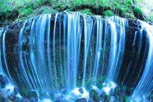 滝状の岩清水と新緑の樹林の写真素材 [FYI01507798]