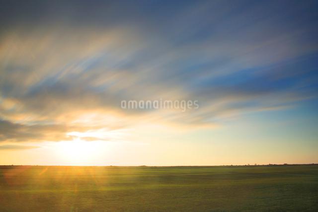 牧草地と朝日と流れる雲の写真素材 [FYI01507815]