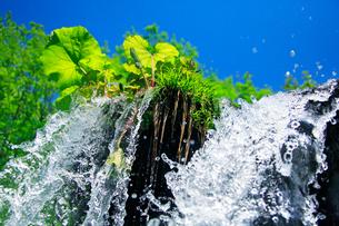 滝状の水しぶきと青空の写真素材 [FYI01507862]