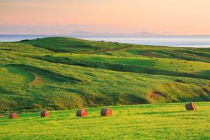 牧草ロールと朝の海の写真素材 [FYI01507902]